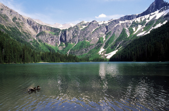 Avalanche Lake, Glacier National Park, Montana